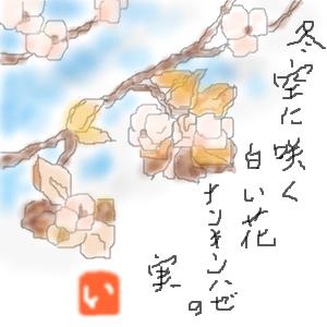 Cocolog_oekaki_2009_12_10_06_07